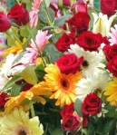 mday-flowers